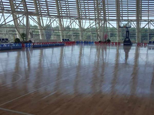 运动木地板
